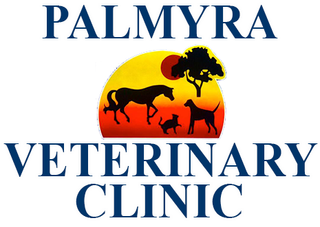 Palmyra Veterinary Clinic